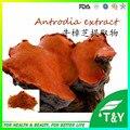 Puro produto de cuidados de saúde natural Antrodia Extrato/Cinnamomea Antrodia Extrato a partir de China 500 g/lote