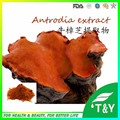 pure natural health care product Antrodia Extract/Antrodia Cinnamomea Extract from China 500g/lot