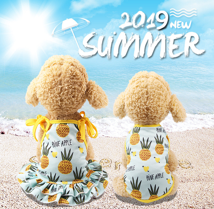 Fruit Print Little Dog Summer Dress (1)