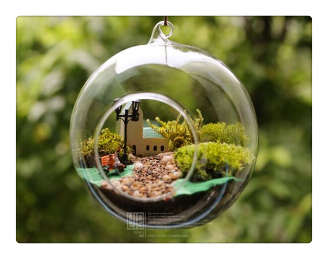 New Clear Round Hanging Glass Vase Bottle Terrarium Hydroponic Container  Pot Flower DIY Home Table Wedding - Online Get Cheap Terrarium Containers -Aliexpress.com Alibaba Group