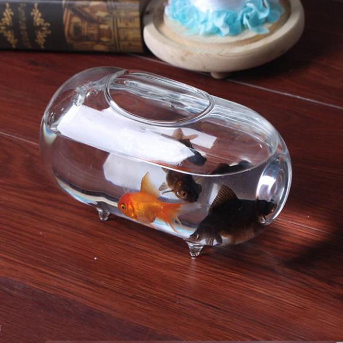 Transparent 18cm Oval Glass Flower Vase Mini Fish Tank Aquarium ...