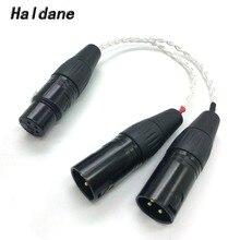 Livraison gratuite Haldane 8 noyaux 7N OCC plaqué argent 4 broches XLR femelle à 2x 3 broches XLR mâle câble équilibré casque Audio adaptateur