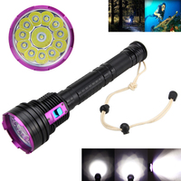 Free Shipping Tactical Waterproof Flashlight 20000LM 12X XM L T6 LED Diving Flashlight