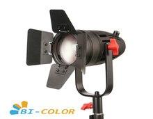 1 pc CAME TV boltzen 30w fresnel fanless focusable led bicolor com saco led luz de vídeo