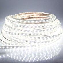 Super bright 5050 LED strip110V- 120V high voltage Cool White Tube type Waterproof flexible SMD led strip 60leds/M