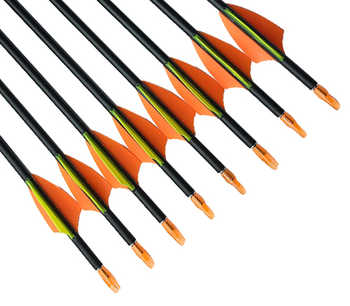 "Archery 12Pcs SF Pure Carbon Arrows ID4.2mm 1.75"" arrow Vanes Pin Nocks Stainless Points Recurve Bow shooting"