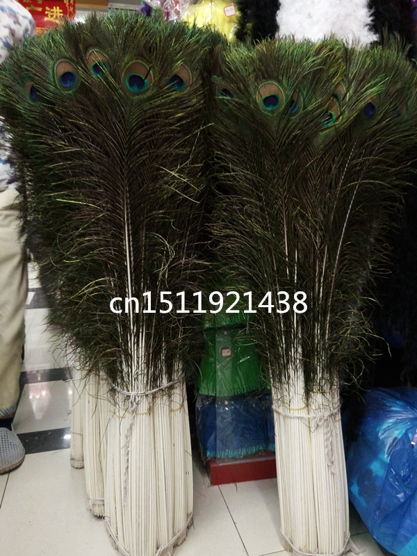 New Free shipping wholesale Quality 1000pcs big natural peacock feathers 100 110cm 40 44inch Decoration diy