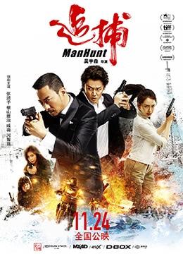 《追捕》2017年香港,中国大陆剧情,动作,悬疑电影在线观看