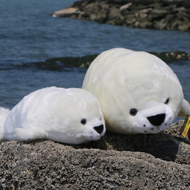 new big plush high quality seal toy lovely white simulaiton seal doll about 75cm middle lovely plush high quality seal toy cute white seal doll gift about 35cm