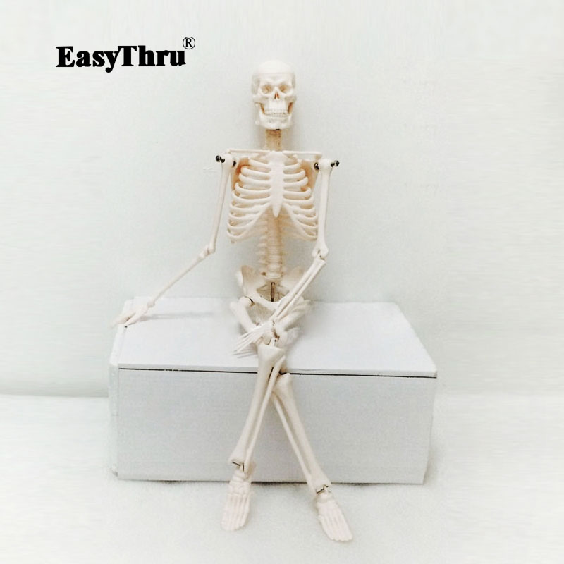 PVC 45cm Human Body Skeleton Model Mini Mannequin OTC Bone Model Medical Teaching