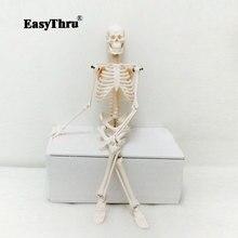 PVC 45cm Insan Vücudu Iskelet Modeli Mini Manken OTC Kemik Modeli Tıbbi Öğretim