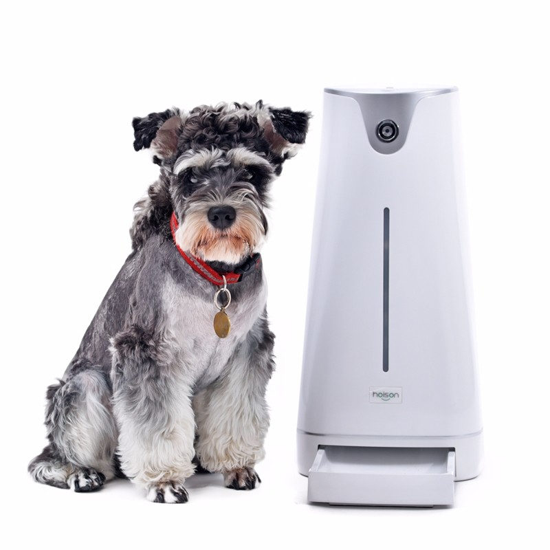 automatic smartfeeder products programmable wopet ly timer dog smart feeder