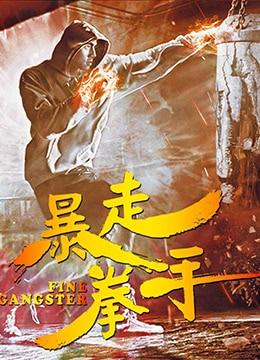 《暴走拳手》2017年中国大陆电影在线观看
