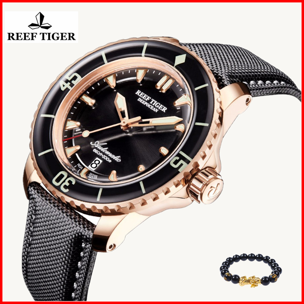 Reef Tiger 2019 luxury brand Mens Diving Watch Luminous 200M Waterproof Automatic Swiss Watches Relogio Masculino RGA3035+gift 機械 式 腕時計 スケルトン