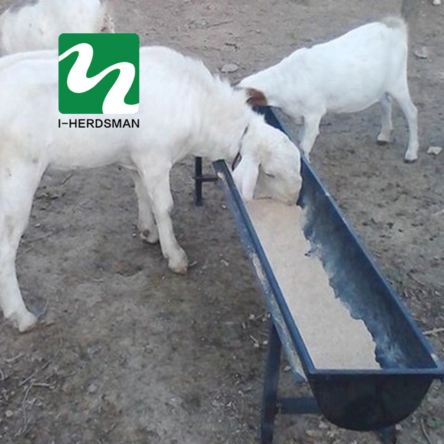 feed trough for sheep drinking water trough drinker water bowl