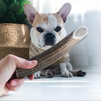 Perro de limpieza comida cuernos mascota masticar juguete Durable de limpieza de los dientes juguete Molar perro palos perro sano aperitivo mascotas suministros