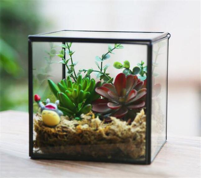 vidrio el cubo forma con tapa florero terrario creativa jarrn de flores de mesa