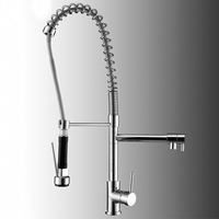 Luxury Pull Out Spray Kitchen Faucet Mixer Tap, Deck Mounted Chrome Finish, 5 Pieces / Lot X8056K1