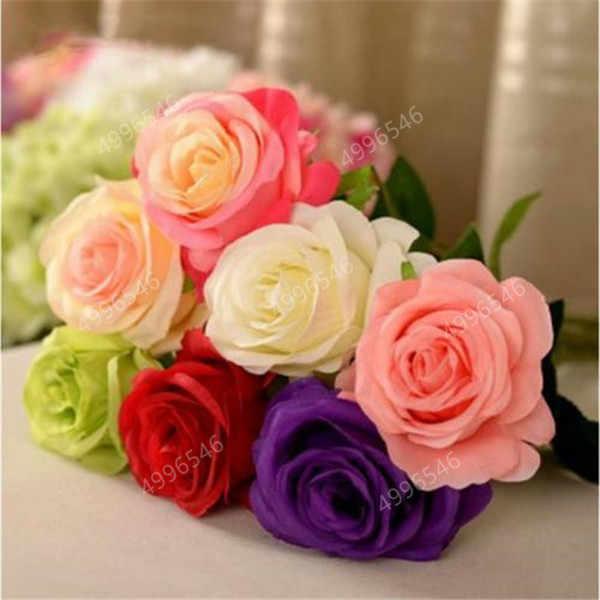 500 Pcs Rosa Fiori Bonsai Pianta Perenne Fiori Bella Bonsai Pianta DIY Giardino di Casa Piante Da Fiore Colorato di Piante Da Giardino
