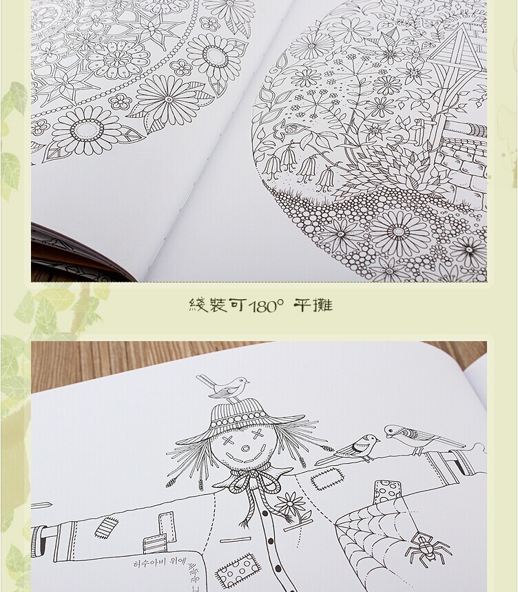 Free Shipping Secret Garden Art Design Book Coloring Books For Adults Colorful Jetoy Choo