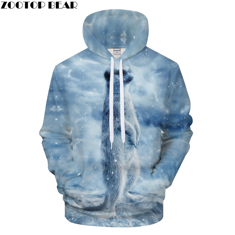 Lovely Animals 3D Printed Hoodies Men Women Autumn Coat Brand Hoodie Sweatshirt Tracksuits Hoody Hooded Drop Ship ZOOTOP Bear