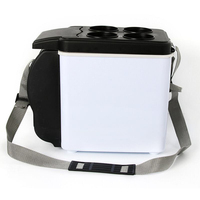 12V 6L portable multifunctional car refrigerator freezer double cooler heater Thermoelectric Refrigerator Compressor