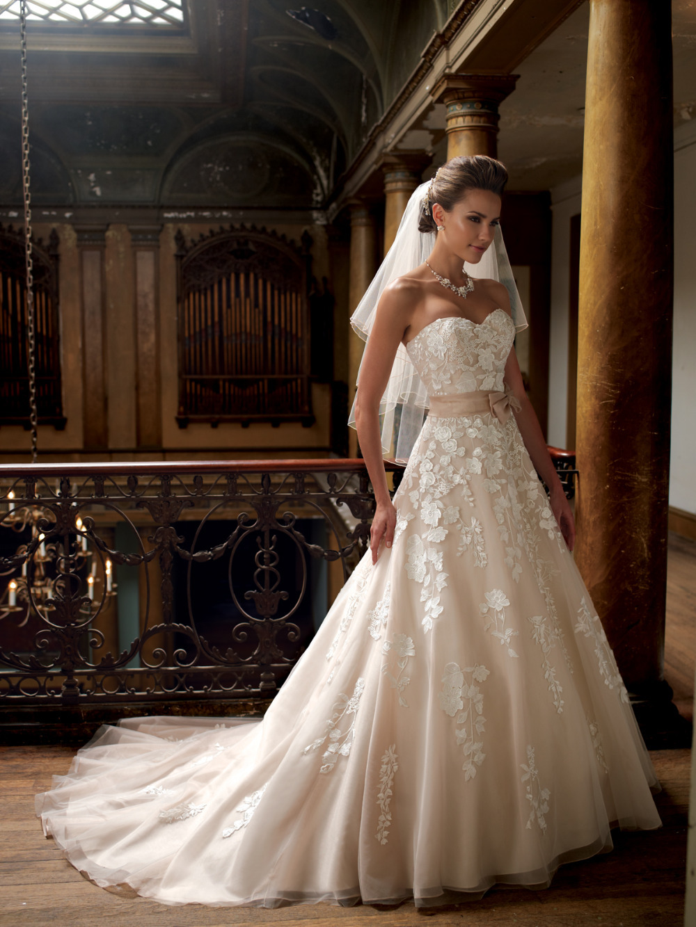 Vintage Wedding Dress Beige Gowns Applique Organza Bride