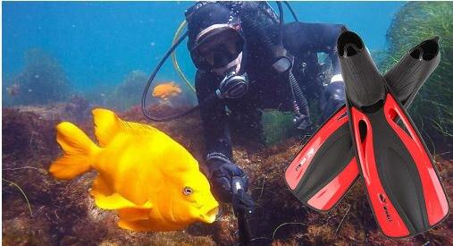 Plongée longue eau aqua mer chaussures pour natation palmes cheville équipement de plongée en apnée loisirs sous-marine sirène monofin palmes - 2