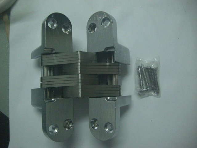Zinc Alloy Conceal hinge AG-006 SIZE 13*60 suitable for door thickness 20mm