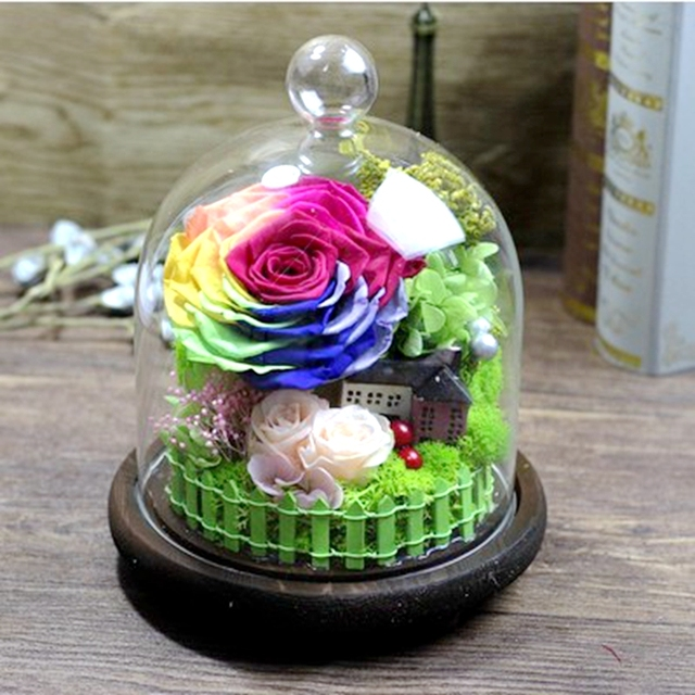 Preserved Flowers Valentine S Day Colorful Eternal Glass Cover To Send His Girlfriend Romantic