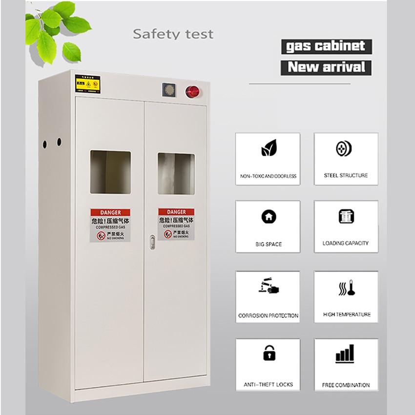 CZ-QP Intelligent Alarm System Steel Cylinder Safety Cabinet Double Bottle Storage Safety Gas Cylinder 220V/40W 190*90*45CM