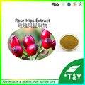 Alta Qualidade Natural de Rosa Mosqueta Extrato 10:1 pó 500 g/lote