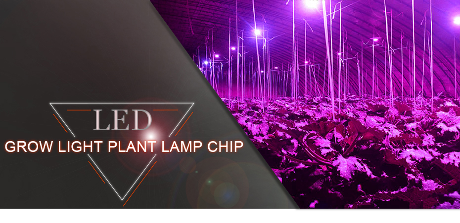Full Spectrum 380nm~780nm Led Grow Light Chip 20w 30w 50w 220v 230v Best For Hydroponics Greenhouse Grow Diy For Led Growth Lamp Buy Now Back To Search Resultslights & Lighting Led Lighting