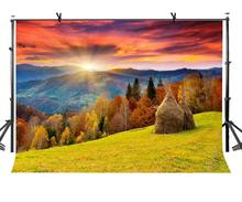 цены 7x5ft Natural Scenery Backdrop Beautiful Natural Rural Scenery Photography Background and Studio Photography Backdrop Props