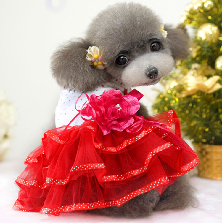 Rose summer girl pet dog clothes pet dress Teddy dog ...