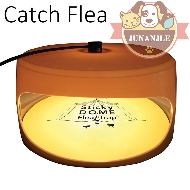 Cat Dog Catch Flea Device Electronic Electric Flea Puppy Fleas Treatment Safe Kill Flea Useful Supplies Pet Shop Dog Acessorios