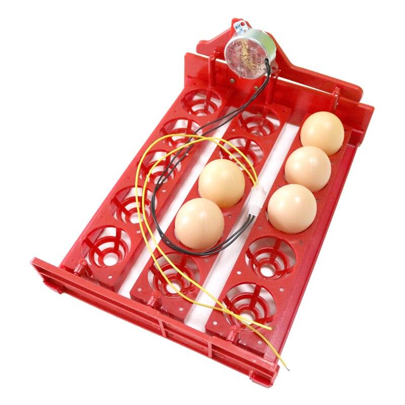 15 Incubator mini ouă Incintă automată pentru ouă Tava 220V / - Produse pentru animale de companie - Fotografie 6