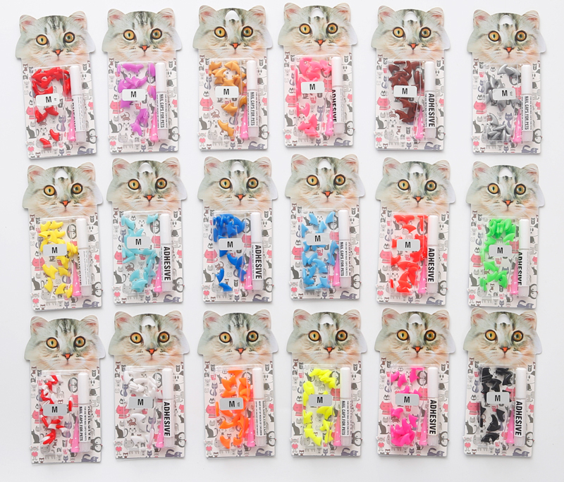 colourful-blister-card-mixture