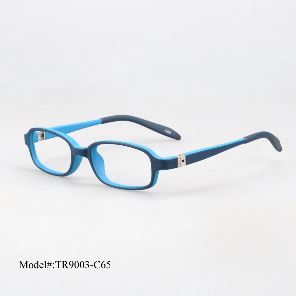 tr9003 C65