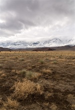Laeacco Wild Grassland Snow Mountain Scenic Photographic Backgrounds Customized Photography Backdrops For Photo Studio