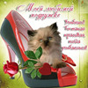 Cat In Shoes Full Drill Diamond Embroidery Painting Cross Stitch Painting Home Decor 3D Kits Diamond