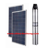 High Efficiency Solar Water Pump Centrifugal Multistage Pump Applicable Home / Agriculture Model LSPI 24V/400W 500W 600W