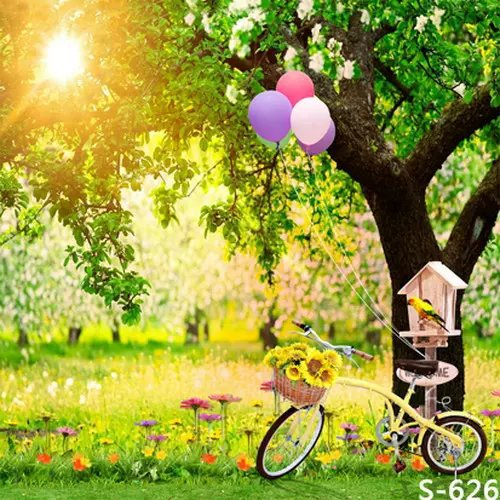 Park Bicycle Balloons Studio Photography Background For ...
