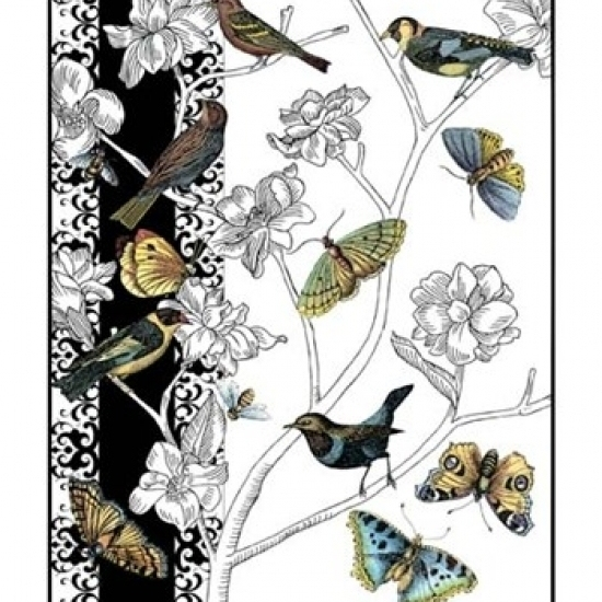 Small Aviary I Poster Print by Chariklia Zarris (10 x 13)