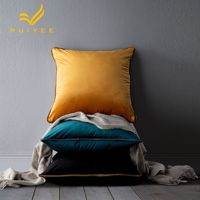 Modern minimalist solid color velvet pillowcase RUIYEE brand home decoration cushion cover office lumbar pillow