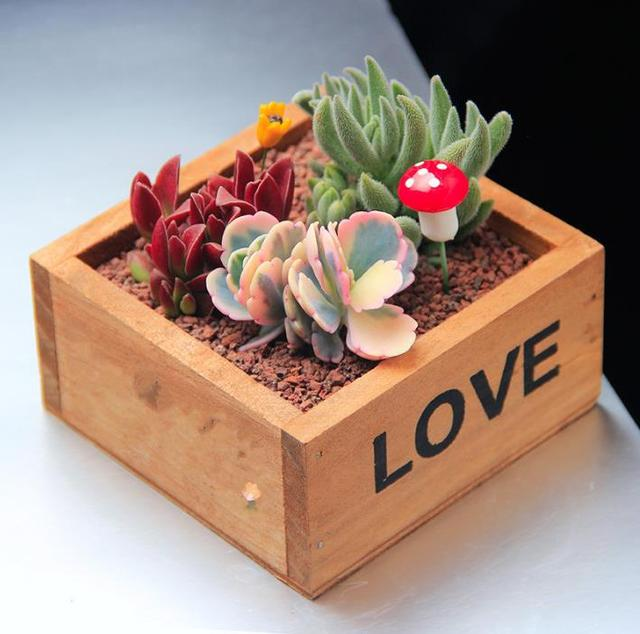 Captivating Rustic Natural Wooden LOVE Letter Succulent Plant Flower Bed Pot Box Home  Garden Planter Free Shipping