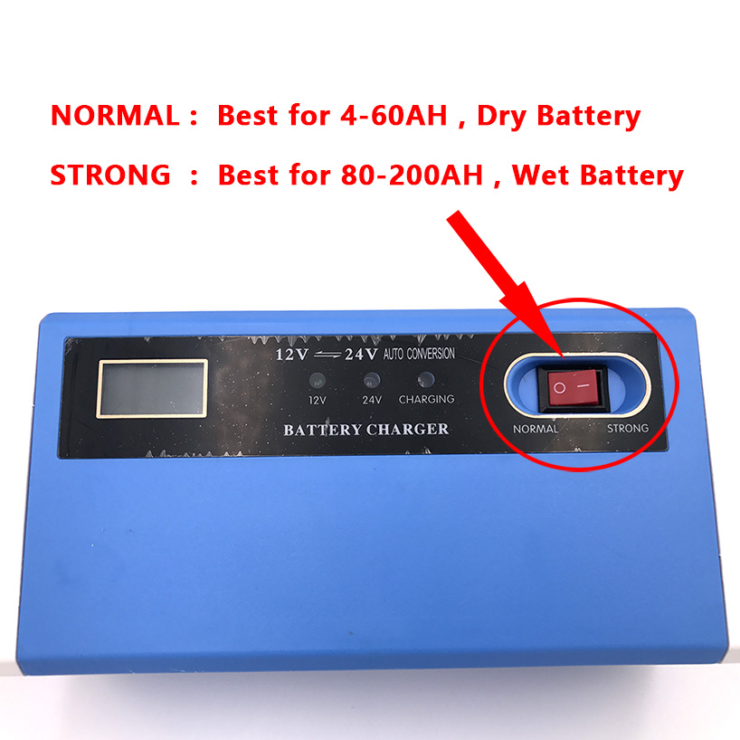 12V Automatic Battery Week's