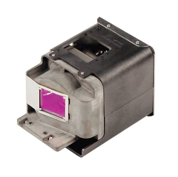 BL-FU310A / FX.PM484-2401 Replacement lamp With Housing For OPTOMA  X501 / W501 / EH501 / HD36 / HD151X Projectors