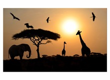 1 Panel Free Shipping The elephant leisurely walk in the sunset Family decoration HD Animal landscape print Sitting room Framed