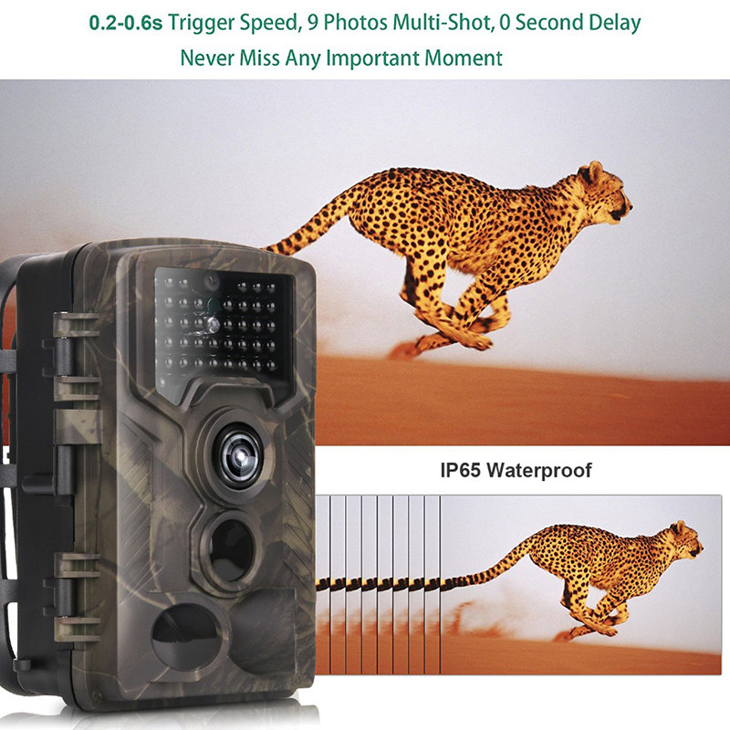 12MP 1080P Hunting Camera Waterproof Wild Trail Camera Infrared Night Vision Camera Animal Observation Recorder with Mount&Cable